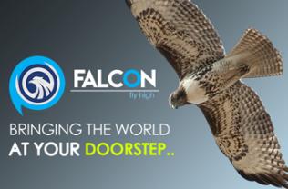 Falcon AMS